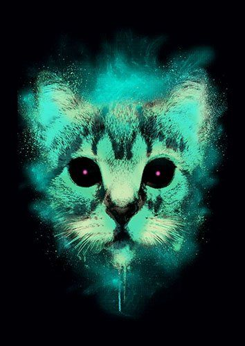 Cosmic cat lou - From £17.50 | Metal Plate Pictures
