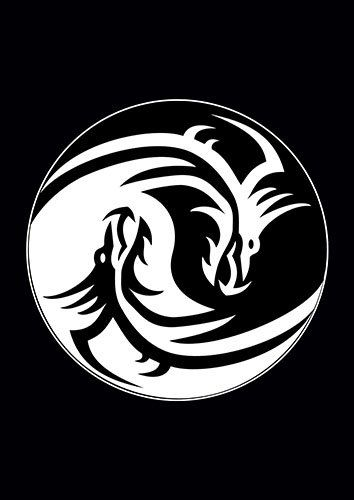 Dragon Ying Yang Circle Black White Chinese - From £17.50 | Metal Plate Pictures