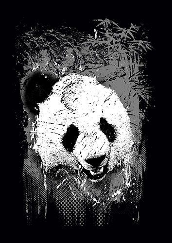 Panda kla - From £17.50 | Metal Plate Pictures