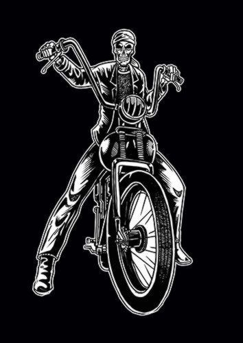 Skull Biker V2 Ns, Sandy\Brown\Blue\Mix colour, X-Large A1 24x36Inch size - From £17.50 | Metal Plate Pictures