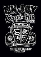 Enjoy Classic Car