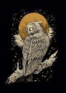 Owl Tru