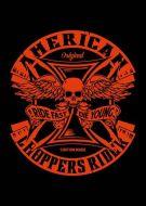 Hell Motoer American Chopper
