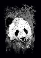 Panda kla