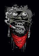 Ape Of Duty