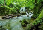 Janet's Foss Malham Yorkshire Waterfall River UK