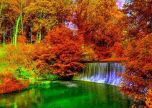 Beautiful copper autumn in the forest