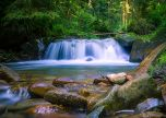 Waterfall in a woodland