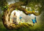 Fairy and the butterflies fantasy