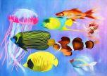Tropical Fish art animal