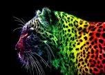 Animal lion cat art