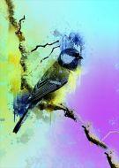 Great tit art bird