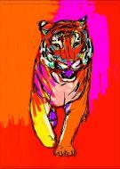 Tiger walk