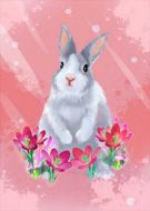 Hand Painted Cute Bunny Rabbit Pink