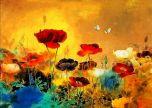 Poppys in a field flower