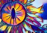 Sun flower colours art flower