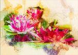 Waterlilly art flower