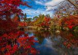 Japanese Asia Foliage lake