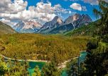 Mountains forest view landscape