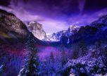Yosemite purple