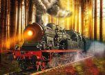 Steam train through the woods trains