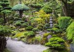 Japanese Garden Stomečky trees