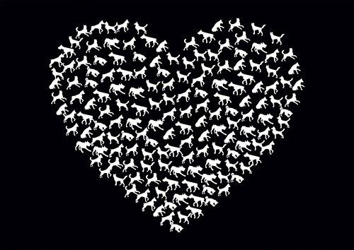 Cats and dogs heart love - From £17.50 | Metal Plate Pictures