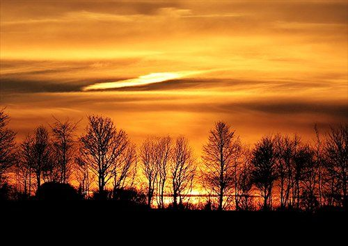Sunset In Yorkshire England, Black colour - From £17.50 | Metal Plate Pictures