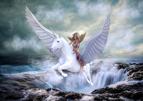 Pegasus rising from waterfall fantasy, Black colour - From £17.50 | Metal Plate Pictures