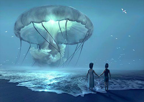 Flying jelly fish fantasy, Black colour - From £17.50 | Metal Plate Pictures