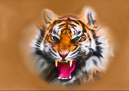 Angry tiger colour art, Black colour - From £17.50 | Metal Plate Pictures