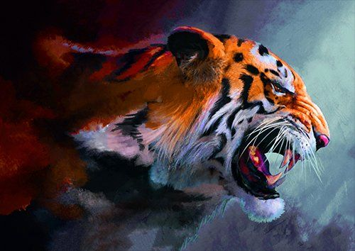 Angry tiger painting, Black colour - From £17.50 | Metal Plate Pictures