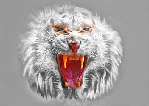 Angry tiger white art, Black colour - From £17.50 | Metal Plate Pictures