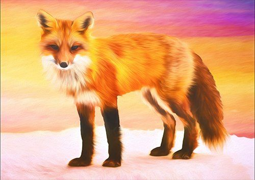 Fox art, Black colour - From £17.50 | Metal Plate Pictures