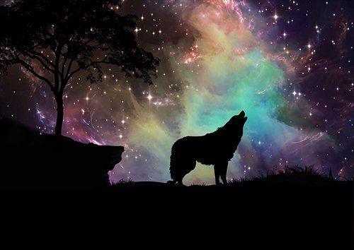 Galaxy wolf, Black colour - From £17.50 | Metal Plate Pictures