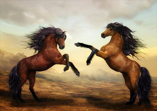 Horses brown, Black colour - From £17.50   Metal Plate Pictures