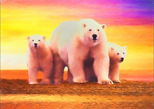 Polar bear cubs art, Black colour - From £17.50 | Metal Plate Pictures
