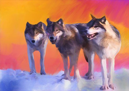 Wild wolves art, Black colour - From £17.50 | Metal Plate Pictures