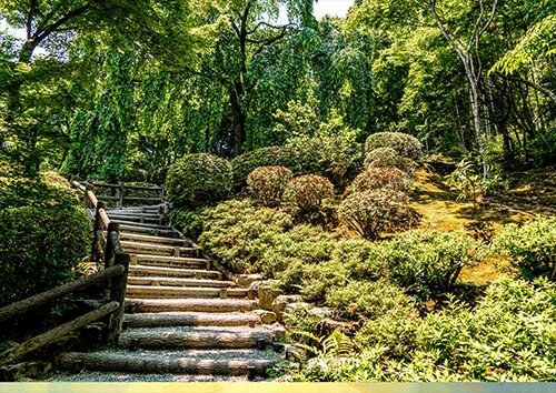 Botanical Gardens Wooden Steps Stairs, Black colour - From £17.50 | Metal Plate Pictures