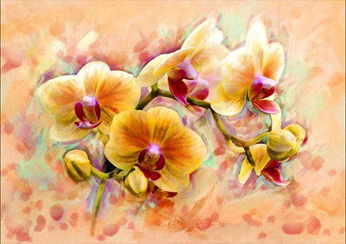 Orchid flower, Black colour - From £17.50 | Metal Plate Pictures