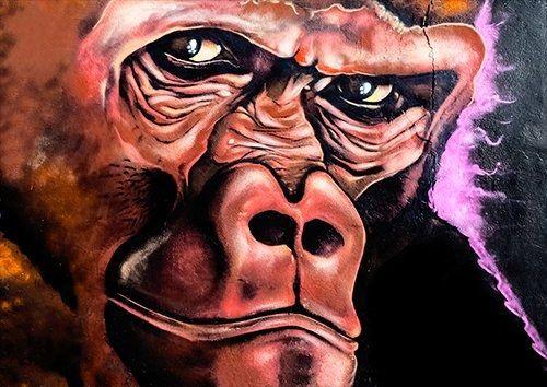 Gorilla graffitti, Black colour - From £17.50 | Metal Plate Pictures