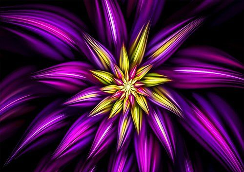 Fractal purple flower, Black colour - From £17.50   Metal Plate Pictures