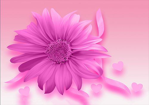 Pink love flower, Black colour - From £17.50 | Metal Plate Pictures