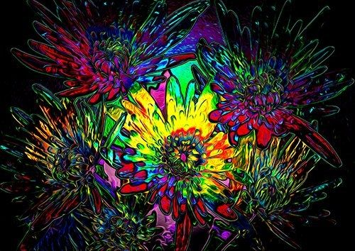 Psychedelic Flower, Black colour - From £20.50 | Metal Plate Pictures