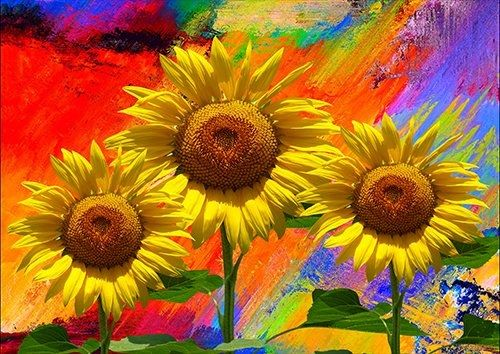 Sunflower art flower, Black colour - From £17.50 | Metal Plate Pictures