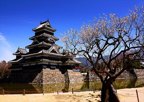 Matsumoto Castle Nagano Japan places, Black colour - From £17.50 | Metal Plate Pictures