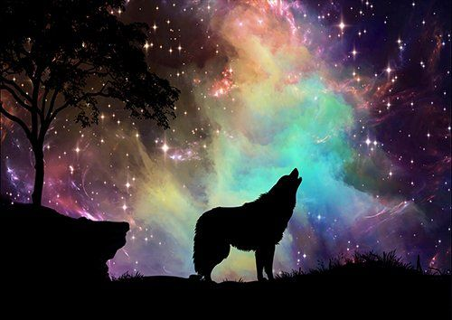 Galaxy wolf silhouette, Black colour - From £17.50 | Metal Plate Pictures