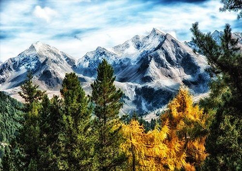 Germany mountains and trees, Black colour - From £20.50   Metal Plate Pictures