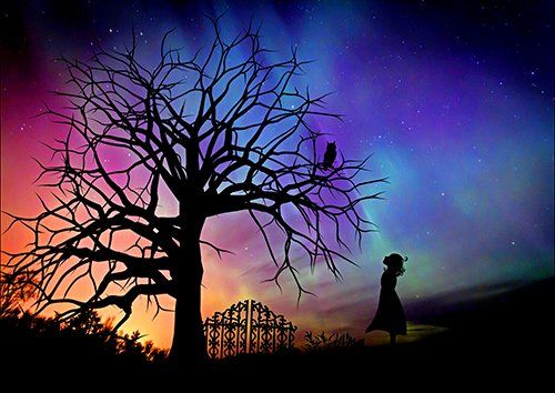 Girl tree owl silhouette, Black colour - From £17.50 | Metal Plate Pictures