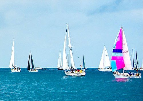 Sailboats Race Yachts 1, Black colour - From £17.50 | Metal Plate Pictures